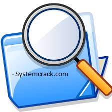 Duplicate File Detective Enterprise Crack 7.0.75.0